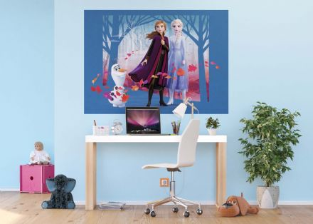 Disney Frozen 2 wall mural wallpaper 160x110cm